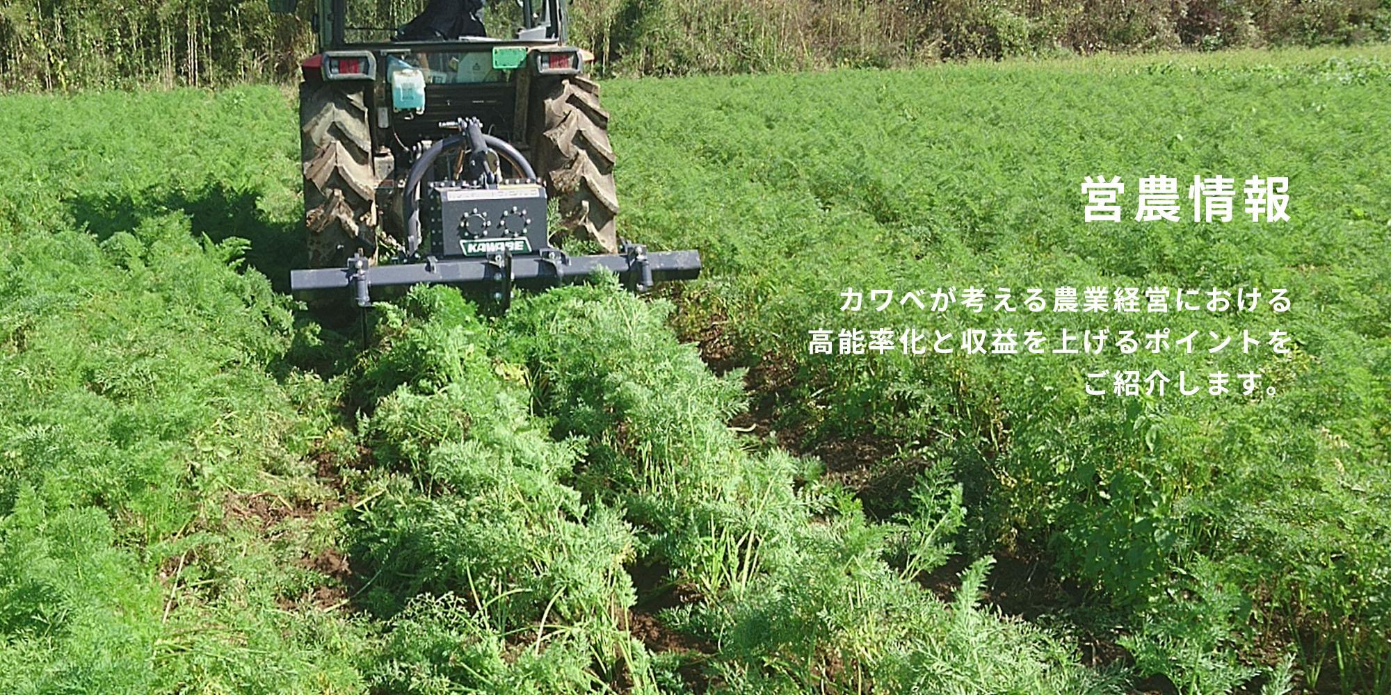 カワベ 営農情報